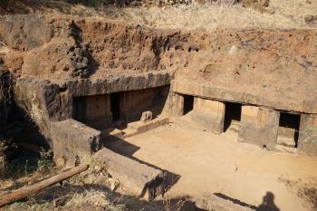 Cave 29 Gaur Lena