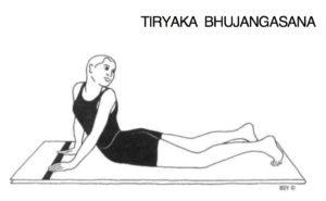 Tiryak Bhujaṅgāsana. Asana Pranayama Mudra Bandha 1996: 199.